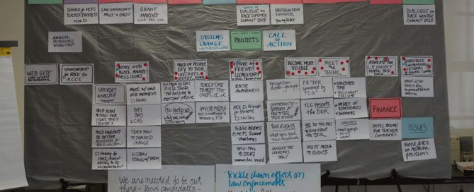 Storyboard for the Annual Planning Retreat for The Community Group, 2019